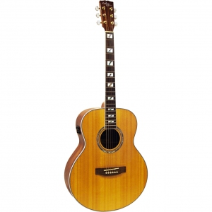 Custom Acoustic FG93E